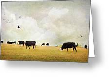 How Now Black Cow Greeting Card