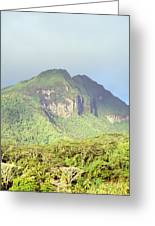 Huahine Forest And Mountaintop Greeting Card
