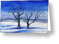 Huddled On A Snowy Field.  Greeting Card