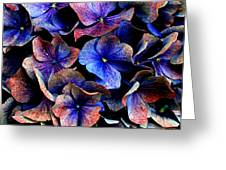 Hues Greeting Card by Julian Perry
