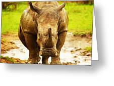 Huge South African Rhino Greeting Card by Anna Om