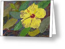 Hula Girl Hibiscus Greeting Card