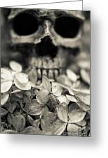 Human Skull Among Flowers Greeting Card
