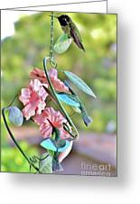 Hummer On Hummers Greeting Card
