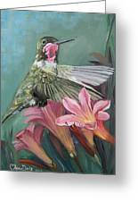 Humming Bird Anna Greeting Card