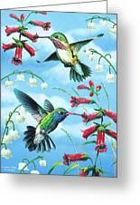 Humming Birds Greeting Card
