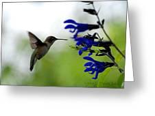 Hummingbird And Blue Flowers Greeting Card