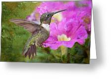 Hummingbird And Petunias Greeting Card by Bonnie Barry