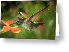 Hummingbird And The Monkey Flowers Greeting Card