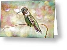 Hummingbird Art Greeting Card by Bonnie Barry