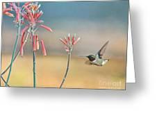 Hummingbird Beak On Horizon Greeting Card