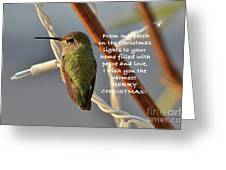 Hummingbird Christmas Card Greeting Card