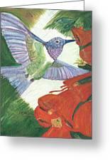 Hummingbird Don't Fly Away Greeting Card