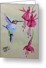 Hummingbird I Greeting Card