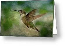 Hummingbird In Flight II Greeting Card