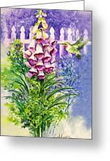Hummingbird In Foxgloves  Greeting Card