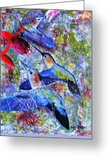 Hummingbird Joy Greeting Card