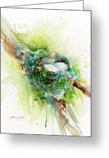 Hummingbird Nest Greeting Card