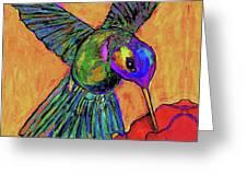 Hummingbird On Yellow Greeting Card