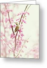 Hummingbird Perched Among Pink Blossoms Greeting Card