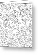fdfdfd coloring pages - photo#9