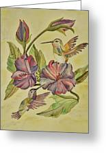 Hummingbirds And Hibiscus Greeting Card
