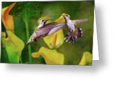 Hummingbirds In Virginia Greeting Card
