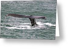 Humpback Whale Flute Alaska Greeting Card
