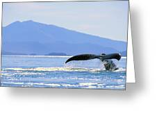 Humpback Whale Flukes Greeting Card