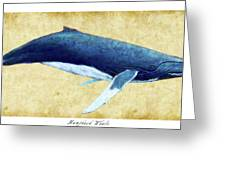 Humpback Whale Painting - Framed Greeting Card