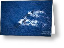 Humpback Whales Aerial Greeting Card