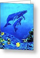 Humpback Whales Hawaii An Reef #14 Greeting Card