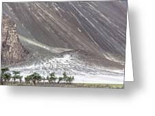 Hunder Desert, Hunder, 2005 Greeting Card