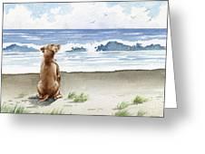 Hungarian Vizsla At The Beach Greeting Card