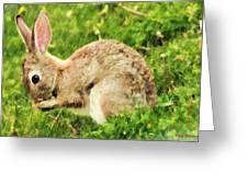 Hungry Bunny Greeting Card