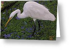 Hungry Great Egret Greeting Card