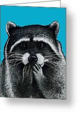 Hungry Raccoon Greeting Card