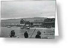 Hunt For Pilot Whales At Torshavn Greeting Card