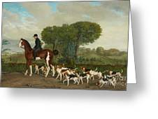 Hunter With A Pack Of Dogs Greeting Card
