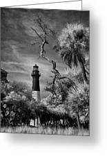 Hunting Island Lighthouse Greeting Card