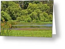 Huntington Beach Central Park II Greeting Card