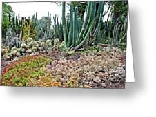 Huntington Desert Garden In San Marino-california Greeting Card