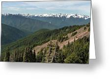Hurricane Ridge View Greeting Card