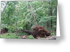 Hurricane  Greeting Card