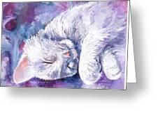 Hushabye Kitten Greeting Card