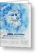 Huskies Team And Mascot-armory 2005 Greeting Card