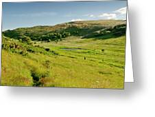 Hutton's Bog View. Holyrood Park. Greeting Card