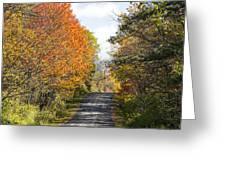 Huyck Preserve Fall Greeting Card