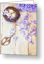 Hyacinth Flowers And Nest Greeting Card
