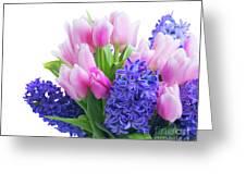 Hyacinths And Tulips  Greeting Card
